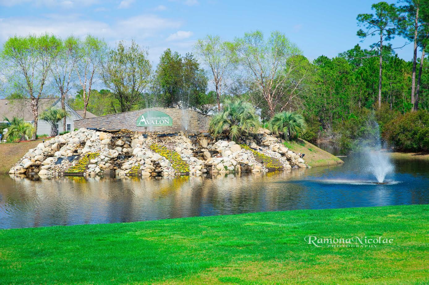 Carolina Forest Avalon Neighborhhod