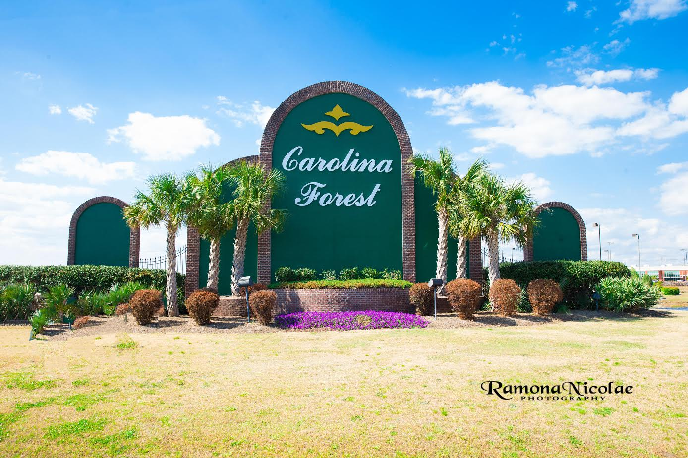 Carolina Forest Community Homes for Sale