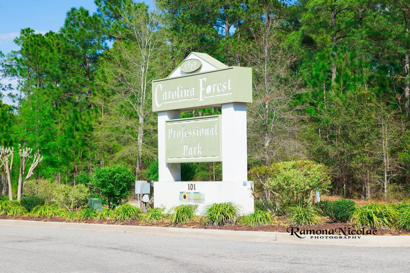 Professional Park Carolina Forest